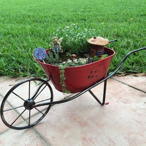 Fairy garden in wheelbarrow
